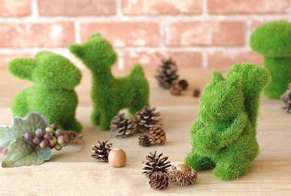 Planting-grass-Nowruz-6