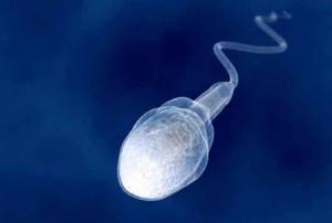راهکارهایی برای افزایش مایع منی یا همان اسپرم