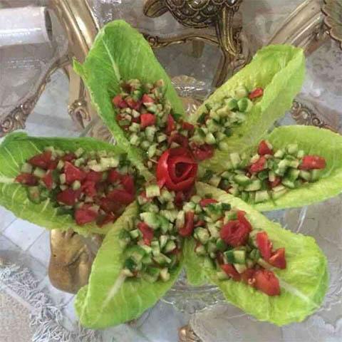 salad-shirazi8